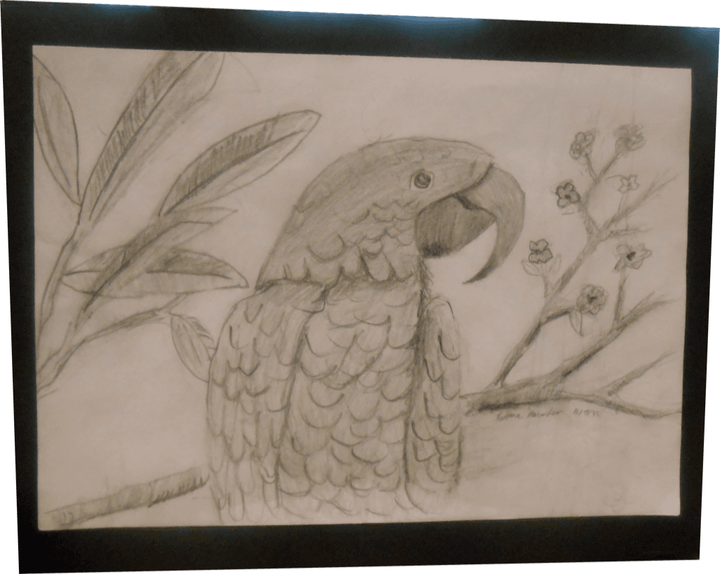 Artwork of parrot