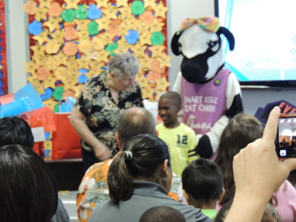 Crowd watching cow